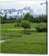 The Beauty Of Bali Canvas Print