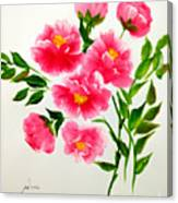 The Beauty Of Peonies Canvas Print