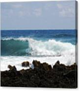 The Beauty Of The Sea Canvas Print