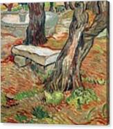 The Bench At Saint Remy Canvas Print