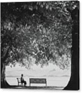 The Bench Man Canvas Print