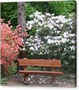The Bench Of Peace And Pleasure Canvas Print