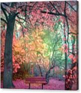 The Bench That Dreams Canvas Print