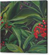 The Berries On Guanella Pass Canvas Print