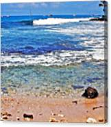 The Big Island Canvas Print