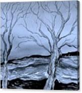 The Bleak Terrain  Canvas Print