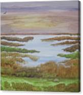 The Boggy Canvas Print