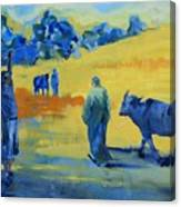 The Boom Man And The Buffalo Canvas Print