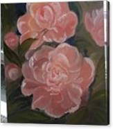 The Bouquet Of Peonies Canvas Print