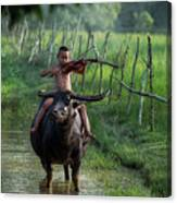 The Boy Playing The Red Violin In Thailand, Asia Canvas Print