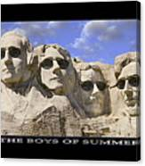 The Boys Of Summer Canvas Print
