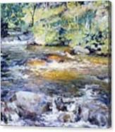 The Brook Canvas Print