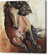 The Buckskin Gallop Canvas Print