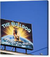 The Bulldog On Top Of The World Canvas Print