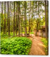 The Cabin In Montana Canvas Print