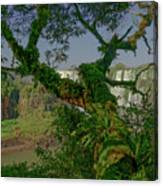 The Canopy Canvas Print