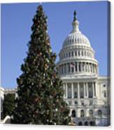 The Capitol Christmas Tree Is Decorated Canvas Print