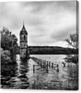 The Cathedral Of Fish Bw Canvas Print