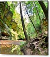 The Caves And Trail At Old Man's Cave Hocking Hills Ohio Canvas Print