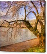 The Cherry Blossom Festival Canvas Print