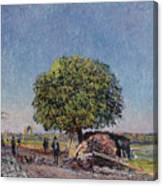 The Chestnut Tree At Saint-mammes Canvas Print