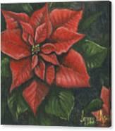 The Christmas Flower Canvas Print