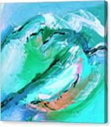 The Coastal Range Canvas Print