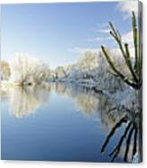 The Cold River Canvas Print