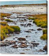 The Colorado Tundra Canvas Print