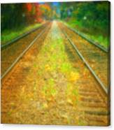 The Colour Along The Tracks Canvas Print
