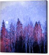 The Colours Of The Moon Canvas Print