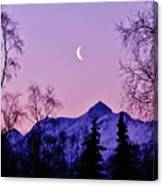 The Crescent Moon In Lavender Canvas Print