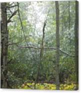 The Cross In The Woods Canvas Print