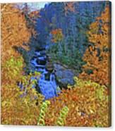 The Cullasaja Canvas Print