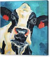 The Curious Cow Canvas Print