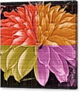 The Dahlia Canvas Print
