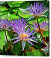 The Dance Of The Lillies Canvas Print