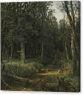 The Dark Wood Canvas Print