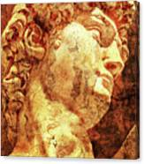 The David By Michelangelo Canvas Print