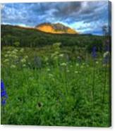 The Dawning Of Majesty Canvas Print
