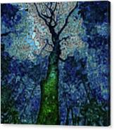 The Deep Wood Canvas Print