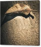 The Desert Burial Canvas Print