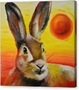 The Desert Hare Canvas Print