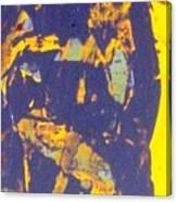 The Devil Behind St. Steven Canvas Print