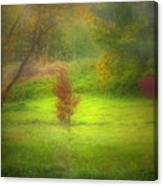 The Dream Field Canvas Print