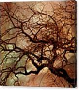 The Dream Oak Triptych Left Panel Canvas Print