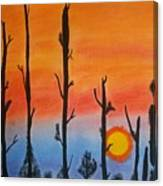 The Dryest Sunset Canvas Print