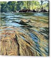 The East Dart River Dartmoor Canvas Print