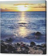 The Ebb And Flow Canvas Print