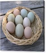 The Eggs Canvas Print